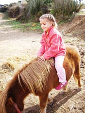 Horse riding in La Alpujarra