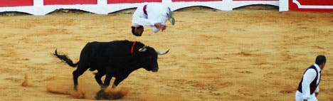 Recotes - Bullfighting