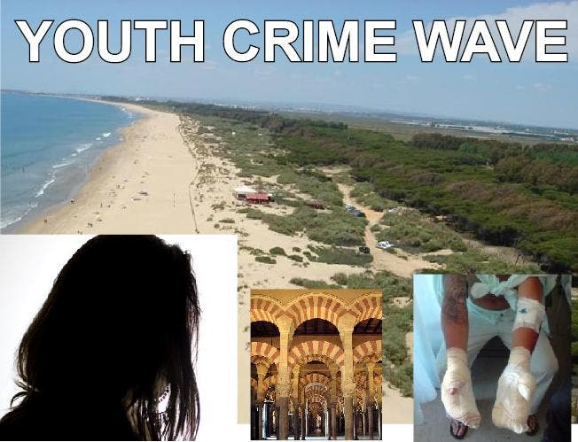 Youth Crime Statistics