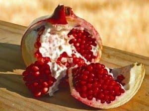 Pomegranate03_edit[1]a