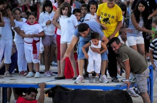 Bull on the rampage in Spain