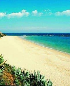 Virgin beach gets 'urbanised'
