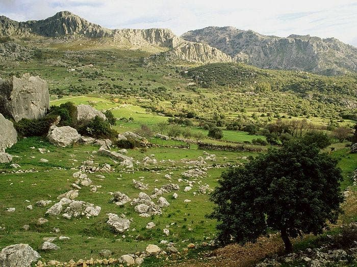 License for confusion in Spanish natural parks