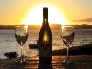 wine-sun