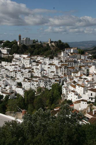 Andalucia's property sales lead country