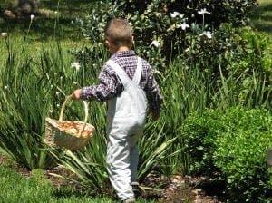 Easter egg hunt at Arboretum Marbella
