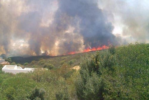 Torreguadiaro blaze tears through 100 hectares