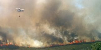 Torreguadiaro blaze tears through 100 hectares