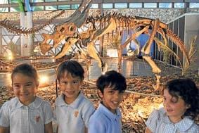 T-Rex terrorises Marbella school pupils