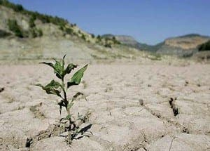 spain in danger of chronic drought