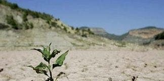 spain in danger of chronic drought e