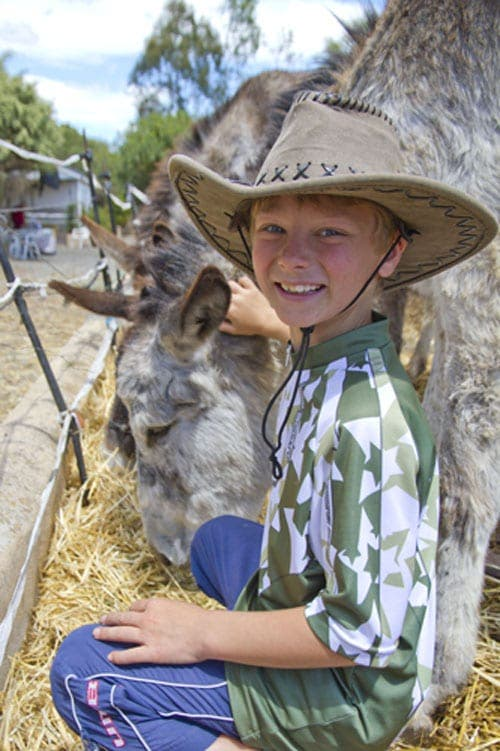 Sabinillas boy campaigns to save endangered donkey