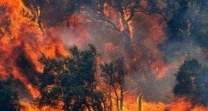 catalonia fires e