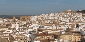 tree branch falls on four punters during tapas fair in Antequera