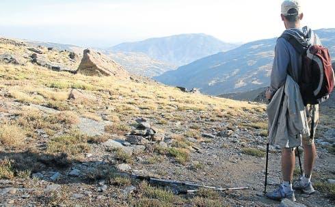 Taking a walk on the wild side through the Sierra Nevada