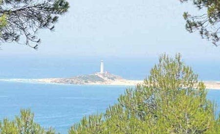 A scenic walking tour of Andalucia's La Brena forest