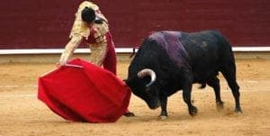 bullfighting-in-spain 2
