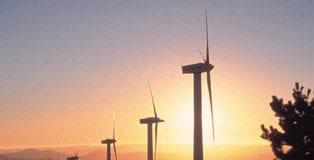 Green tax reform in spain