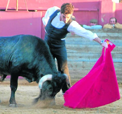I'm taking the bull by the horns, insists British bullfighter