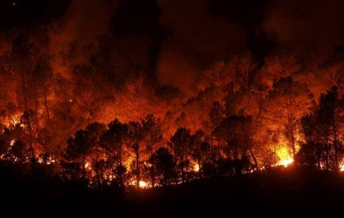 Al-Qaeda responsible for Spanish forest fires, according to Russian secret service