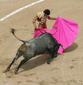 Bullfighting continues to bring in soaring ticket sales