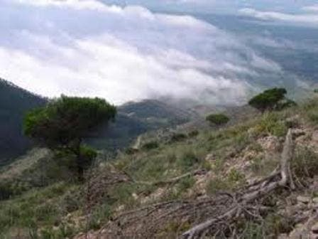 The hiking trails of Mijas