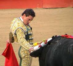 Malaga neuroscientist finds similarities between bullfighters and 'aliens'