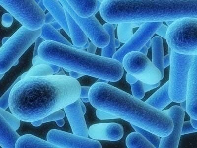 Pensioner dies in Legionnaires outbreak in Spain
