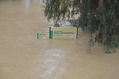 Malaga hit with yet more heavy rain and flooding