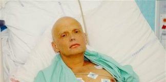 Alexander Litvinen b e