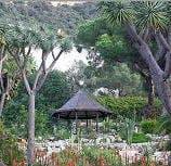 Gib Alameda gardens
