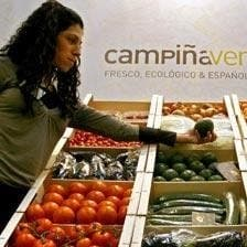 Crisis takes bite out of Spaniards' food budget