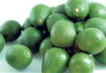 avocados in pile e