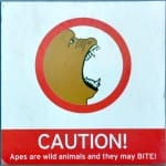 monkey-sign-2