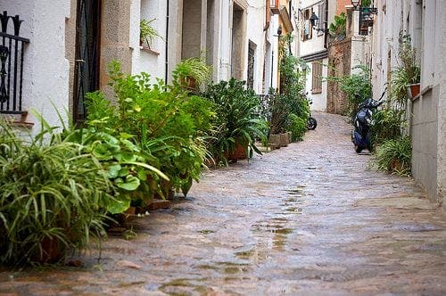 March sees worst rainfall in 60 years in Andalucia