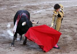 Spanish Congress votes to protect bullfighting