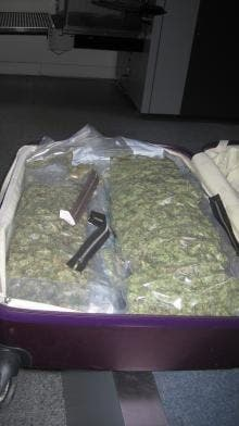 Briton jailed for smuggling marijuana into the UK from Spain