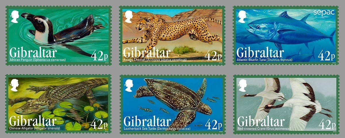 Endangered animals in Gibraltar!