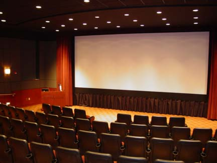 Spanish cinema visits take a tumble