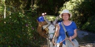 Axarquia Donkey Trek