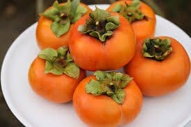 Persimmons take Europe by storm