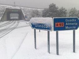 snow snow