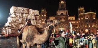 gran canaria three kings camels