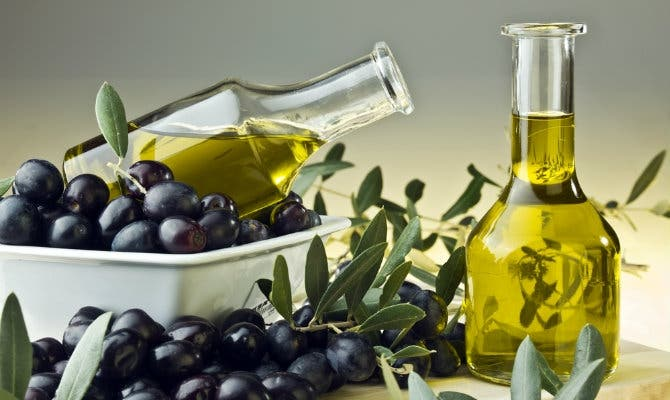 New Malaga metro will be powered by olive oil