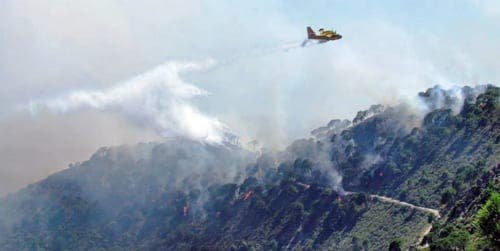 Competa wildfire being investigated as arson