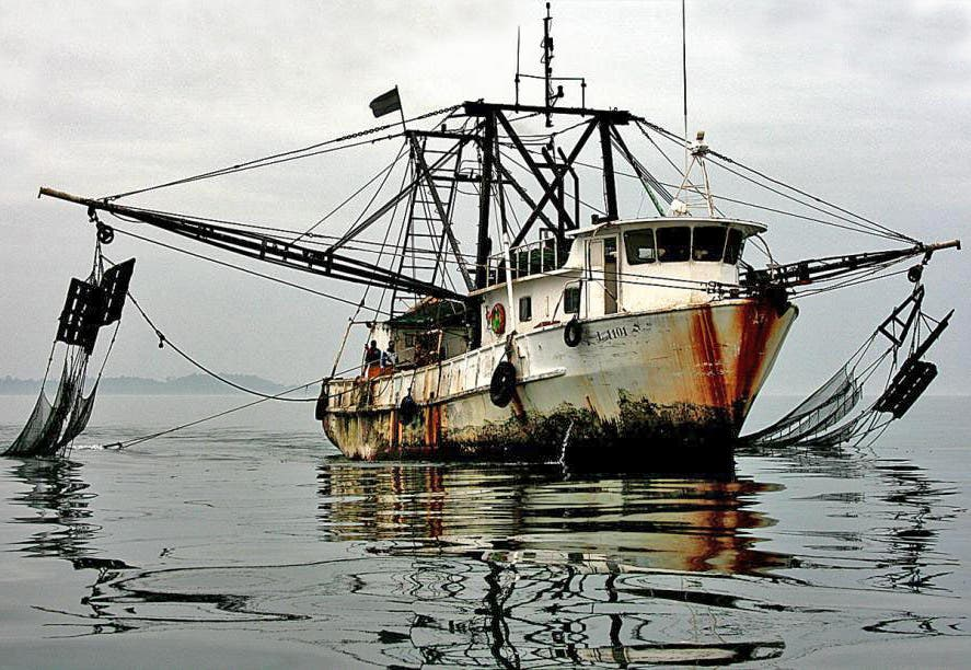 Spain to boost global fight against pirate fishing