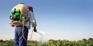 pesticides e