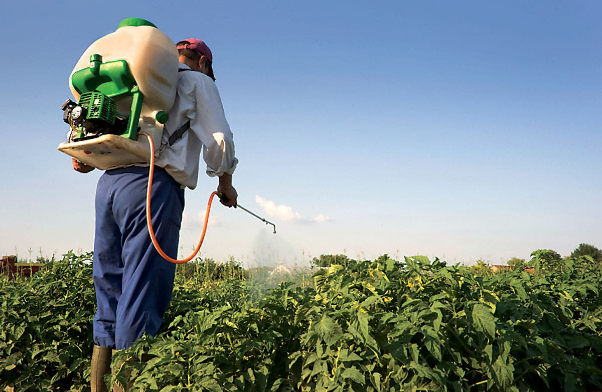 NGOs say no to poisonous pesticides in Spain