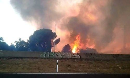 Three arsonists arrested in Las Rozas