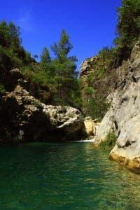 natural pool 4